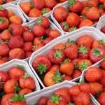 Erdbeer 01
